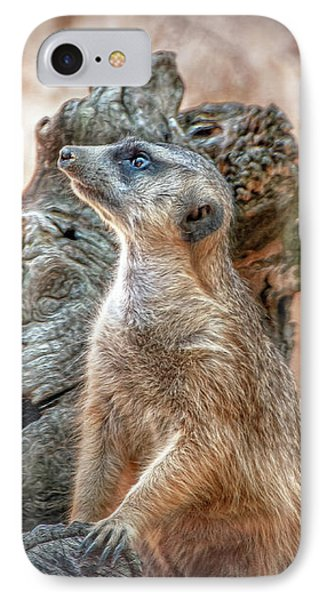 IPhone Case featuring the photograph Slender-tailed Meerkat by Hanny Heim
