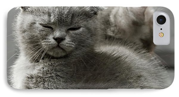 Slumbering Cat IPhone Case by Evgeniy Lankin