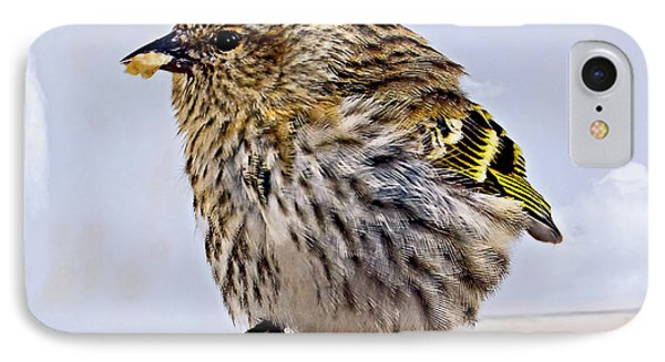 Small Bird Eating Seed IPhone Case by Susan Leggett