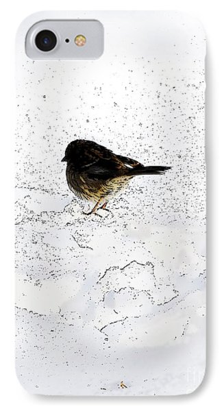 Small Bird On Snow IPhone Case by Craig Walters