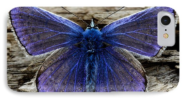 Small Blue Butterfly On A Piece Of Wood In Ireland IPhone Case by Pierre Leclerc Photography