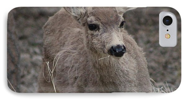 Small Fawn In Tombstone Phone Case by Colleen Cornelius