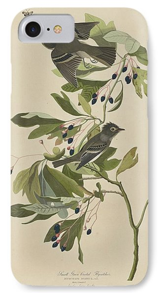 Flycatcher iPhone 7 Case - Small Green-crested Flycatcher by Dreyer Wildlife Print Collections