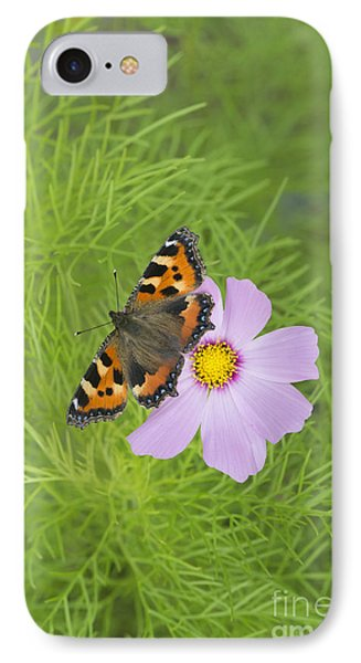 Small Tortoiseshell  IPhone Case by Tim Gainey