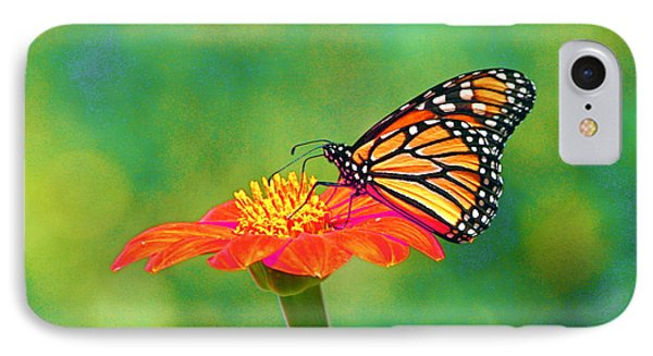 IPhone Case featuring the photograph Small Wonders by Byron Varvarigos
