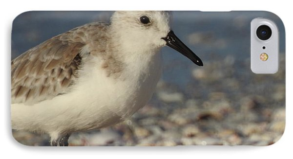 Smallest Bird IPhone Case