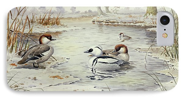 Smew IPhone Case by Carl Donner