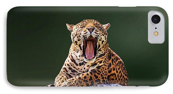 Smile IPhone Case by Ivan Vukelic