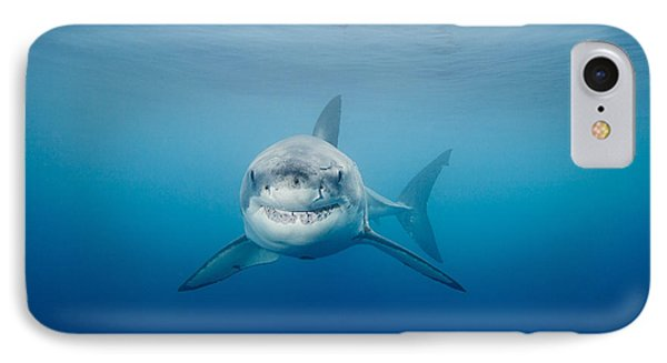 Smiling Great White Shark Phone Case by Dave Fleetham - Printscapes