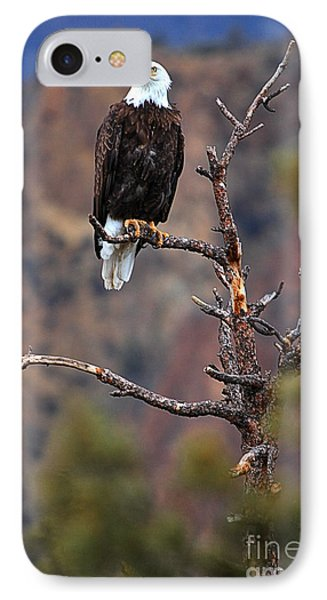 Smith Rock Lookout IPhone Case by Adam Jewell