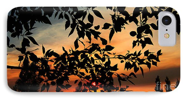 Smoked Filled Sunset IPhone Case by Janice Westerberg