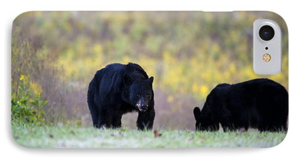 Smoky Mountain Black Bears IPhone Case