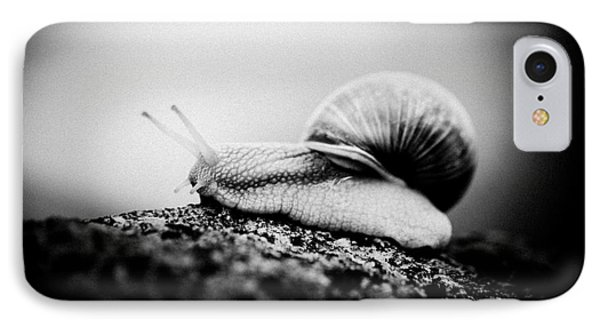 Snail Crawling On The Stone Artmif.lv IPhone Case by Raimond Klavins