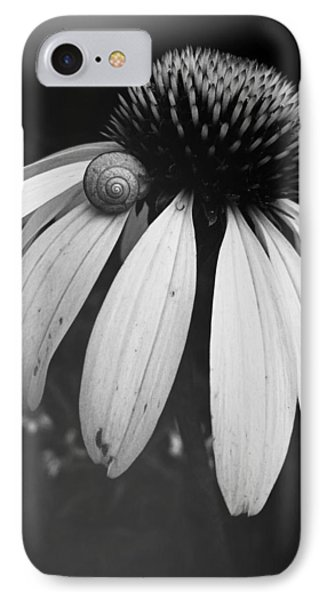 IPhone Case featuring the photograph Snail by Sharon Jones