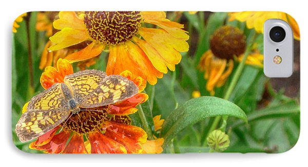 Sneezeweed IPhone Case by Shelley Neff