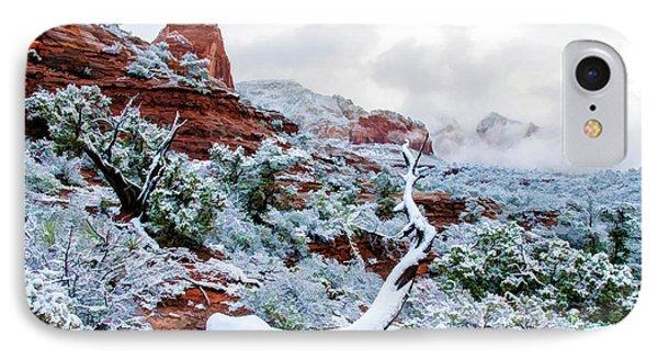 Snow 05-024 IPhone Case by Scott McAllister