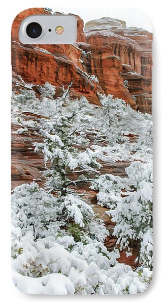 Snow 06-051 IPhone Case by Scott McAllister
