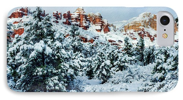 Snow 09-007 IPhone Case by Scott McAllister