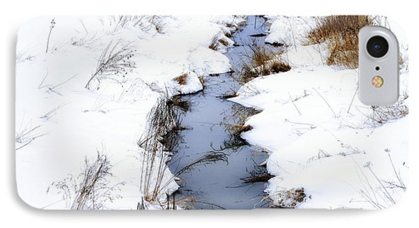 Snow And Creek Welch Glade IPhone Case