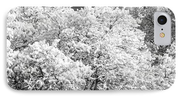 Snow And Frost On Trees In Winter IPhone Case by John Brink