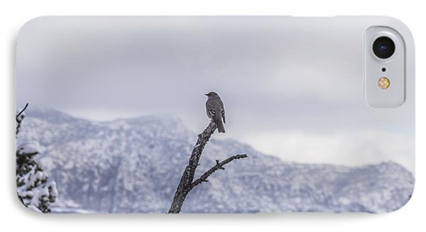 IPhone Case featuring the photograph Snow Bird by Laura Pratt