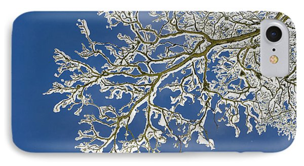 Snow Branch IPhone Case by Tim Gainey