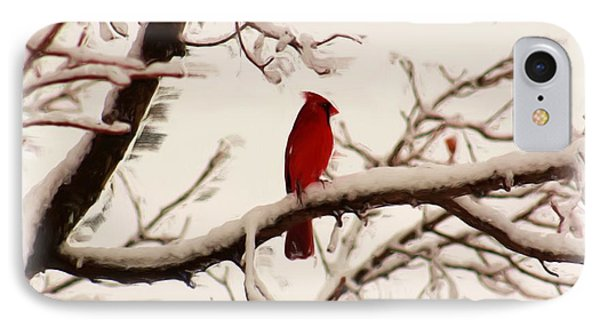 Snow Cardinal Phone Case by Janet Pugh