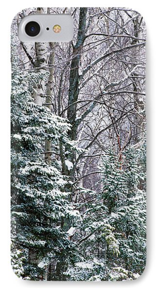 Snow-covered Forest, Wisconsin, Usa IPhone Case by Panoramic Images