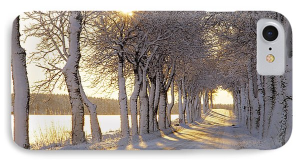 Snow Covered Road IPhone Case by Panoramic Images