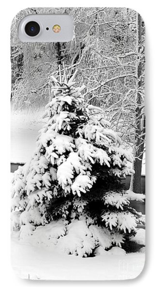Snow Covered Trees Phone Case by Kathleen Struckle