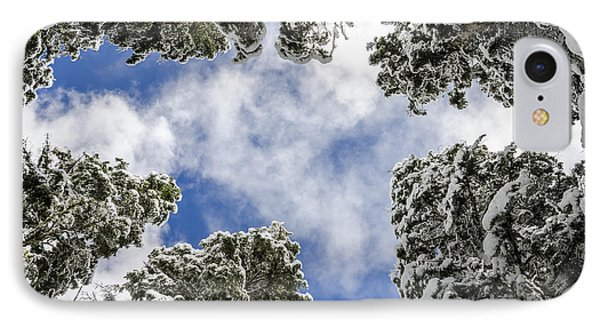 Snow Covered Trees IPhone Case by Pelo Blanco Photo
