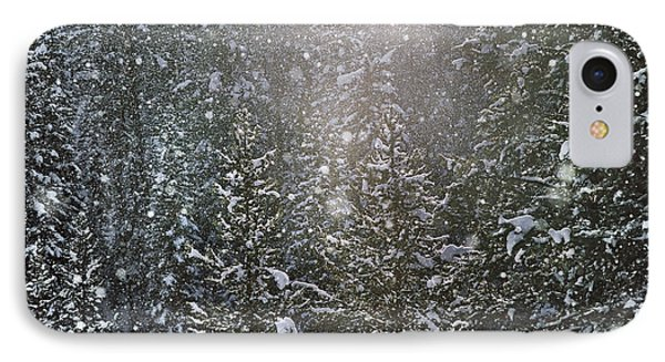Snow Flakes IPhone Case by Leland D Howard