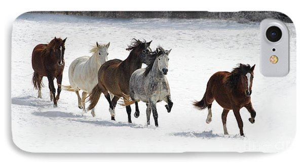 Snow Gallop IPhone Case