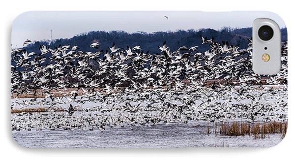 Snow Geese At Squaw Creek IPhone Case
