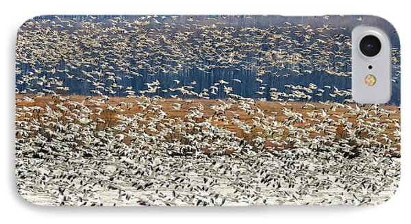 IPhone Case featuring the photograph Snow Geese At Willow Point by Lois Bryan