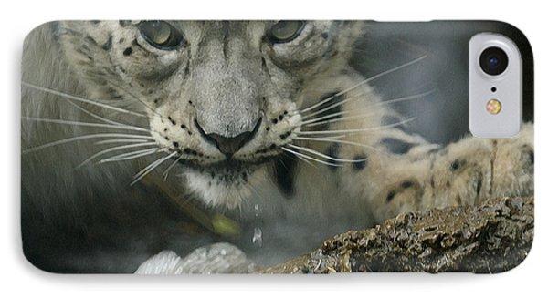 Snow Leopard 11 IPhone Case by Ernie Echols