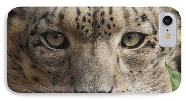 Snow Leopard 13 IPhone Case by Ernie Echols