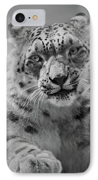 IPhone Case featuring the photograph Snow Leopard  Bw by Sandy Keeton