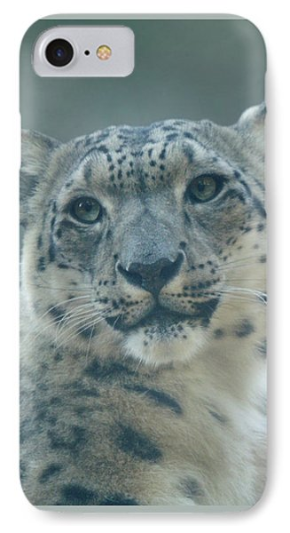 IPhone Case featuring the photograph Snow Leopard Portrait by Sandy Keeton