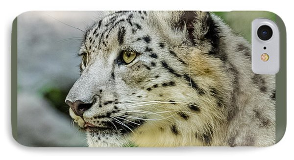 Snow Leopard Portrait IPhone Case by Yeates Photography