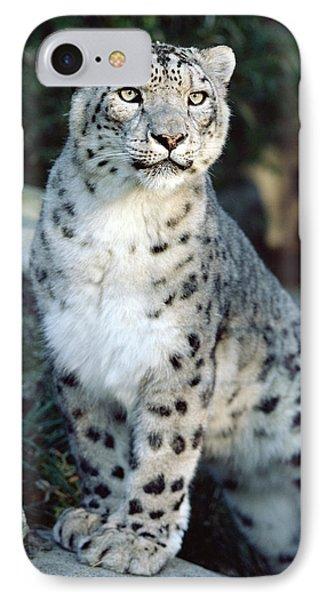 Snow Leopard Uncia Uncia Portrait Phone Case by Gerry Ellis