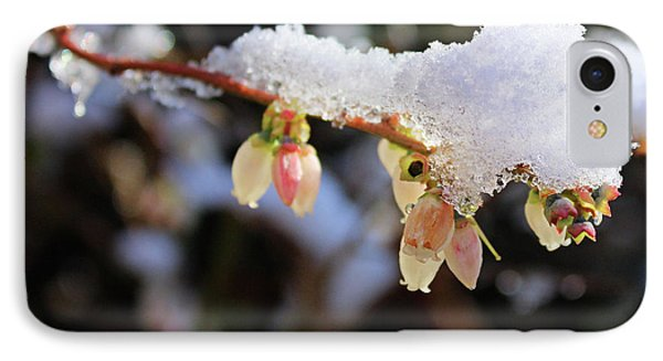 IPhone Case featuring the photograph Snow On Blueberry Blossoms by Kristin Elmquist