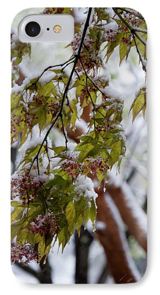 IPhone Case featuring the photograph snow on the Cherry blossoms by Chris Flees