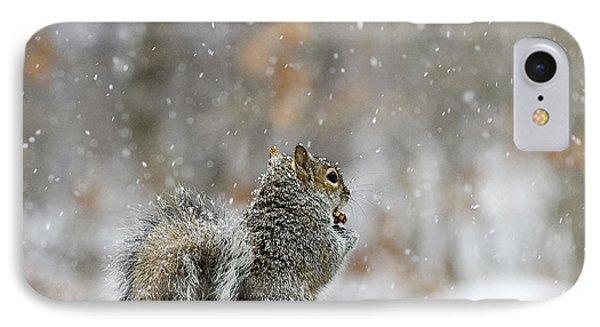 Snow Squirrel IPhone Case