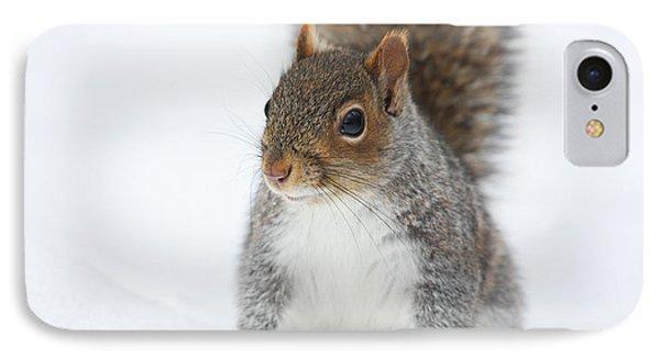 Snow Squirrel Phone Case by Karol Livote