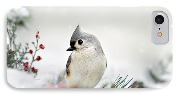 Snow White Tufted Titmouse IPhone Case by Christina Rollo