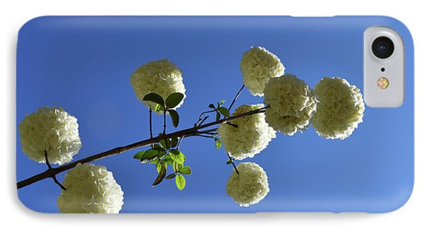 IPhone Case featuring the photograph Snowballs On A Stick by Skip Willits