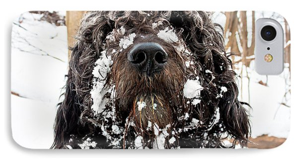 IPhone Case featuring the photograph Snowbeast No 1 by Brian Carson