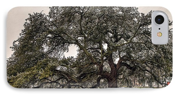 Snowfall On Emancipation Oak Tree IPhone Case by Jerry Gammon