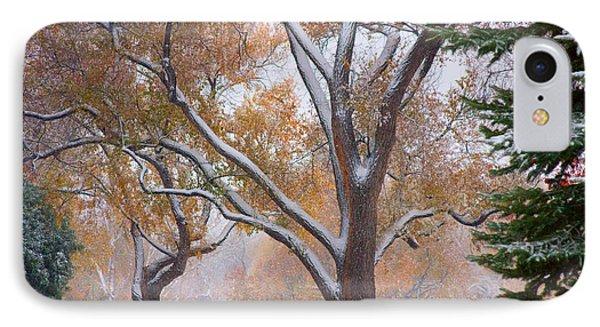 Snowy Autumn Landscape Phone Case by James BO  Insogna